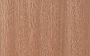 meranti wood color